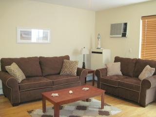 Spacious living room with full size sofa bed and loveseat