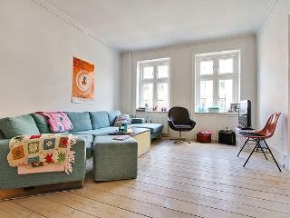 Beautiful Copenhagen apartment at the lakes