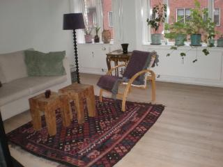 Charming Copenhagen apartment near Christianshavn Metro
