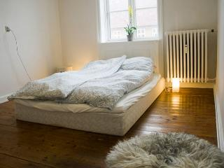 Charming Copenhagen apartment near Enghave Plads, Copenhague