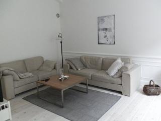 Large and beautiful Copenhagen apartment at Oesterbro, Copenhague