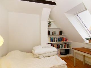 Brammingegade Apartment