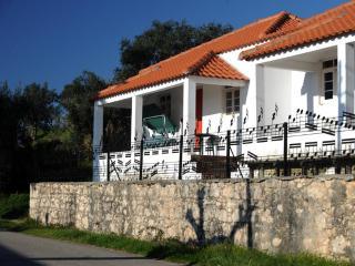 Termas-da-azenha: charming familyhouse Oliveira, Figueira da Foz