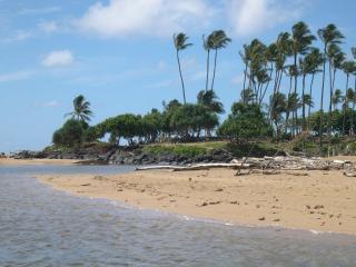 Wailua Bay View  River & Oceanfront Condo * KAUA'I