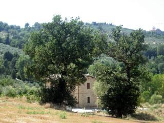 Apartment in the Green Heart of Italy (Umbria)