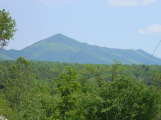 Kennedy's Peak (view from patio / deck)