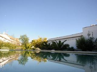 Historic villa with big pool & garden in Andalucia, Ecija
