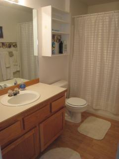 Third full bath tub and shower main floor