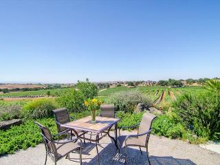 Live on top of  Views, Pool, Bocce Ball, Hot Tub, BBQ and Fun!, Paso Robles