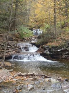 hiking at Rickett's Glen