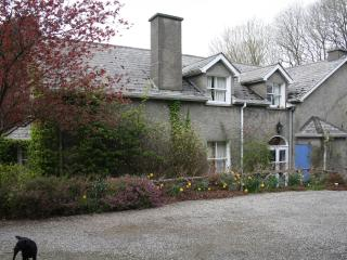 Moate House Bed & Breakfast Rathmore Naas  Kildare