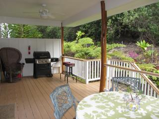 Your private large lanai with gas BBQ, table and chairs overlooking the lush gardens and greenbelt