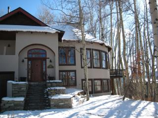 5 Bedroom/5.5 Bath Anthracite Home Great 4 Familes, Crested Butte