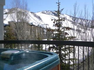 Private Hot Tub.Views of Slopes.Discount Lift Tix*, Steamboat Springs