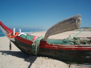Yavanna - Local Beach and Fishing Boat