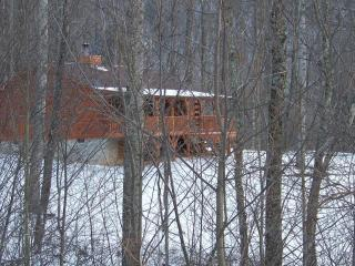 Cabin through the trees