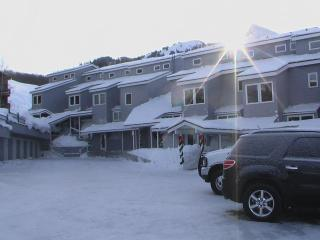 3 Bed Crested Mtn. Condo Ski-in/out!, Crested Butte