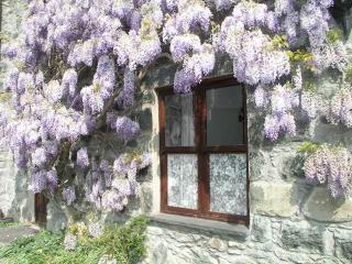 Tressi Porffor Cottage In Conwy Valley, Tyn-y-Groes