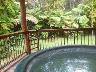 hot tub overlooking your 5 acres of rain forest seclusion