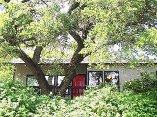 Kaleido House - uniquely Austin 2/1 near Zilker,DT
