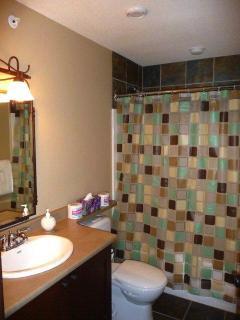 Second Bathroom (bath + shower), opposite second bedroom. Both have shower, hairdryer, heated tiles