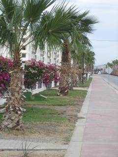 Street outside the condo