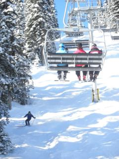 typical view from the lift at Sun Peaks