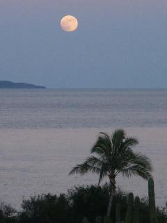 Full moon over the island