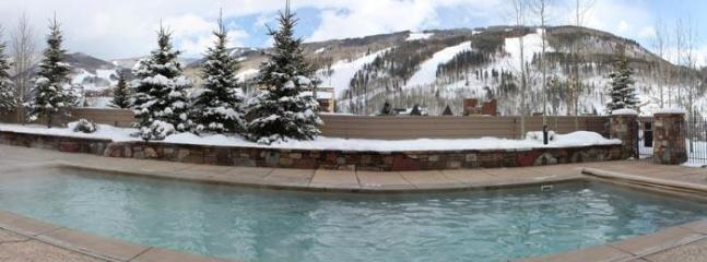 Winter Pool View
