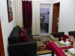 Cosy, Peaceful, Furnished 2 BR  Condo Near Airport, Paranaque