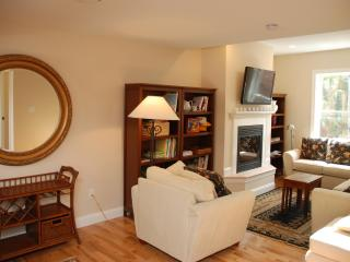 Second Photo of Living Area