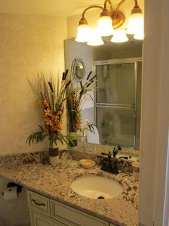 The guest bathroom has also had extensive remodeling.