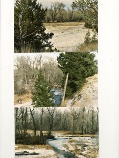 Michael Angus Ranch