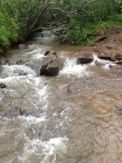 CREEK runs over 400feet along front of property