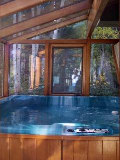 Sun Room with Hot Tub/Spa