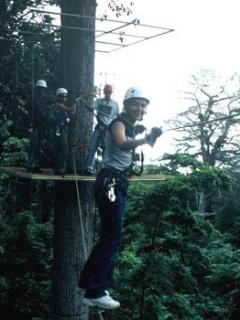Canopy  zip line tours located nearby