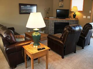 MR48 Pleasing Townhouse w/Fireplace, Garage, Private Laundry, WIfi