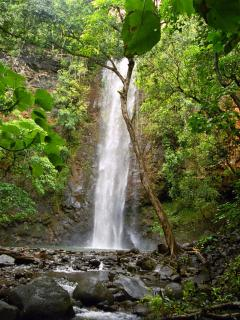 Secret falls off of Wailua River