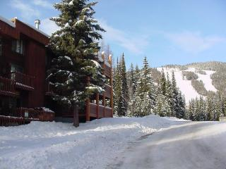 Ski in-Ski out, Big Mountain Montana Condo