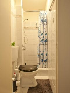 Shower and toilet, small and comfy