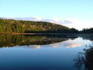 Hodgdon Pond 2, Seal Cove