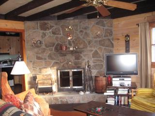 LAKE WALLENPAUPACK W/LAKE VIEW,WOOD F/P,F/PIT,WIFI, Paupack