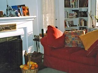 Salle de séjour avec cheminée et bibliothèque