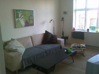 Copenhagen apartment close to the lakes & Faelledparken