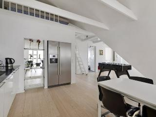 Large Copenhagen penthouse apartment close to Tivoli