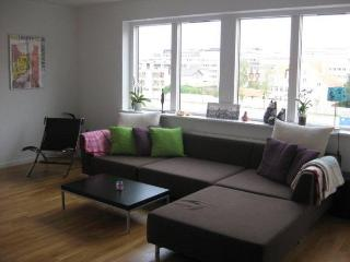 Family friendly Copenhagen apartment near the metro