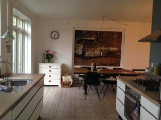 Renovated Copenhagen apartment close to Central Station