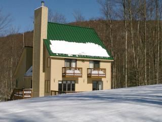 Canaan Valley Slopeside Ski In Ski Out Chalet