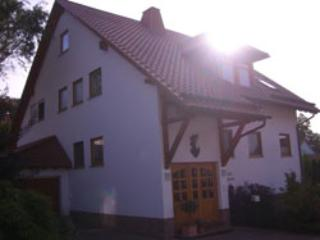 Vacation Apartment in Landstuhl - 753 sqft, terrace, child-friendly, quiet location (# 1237)