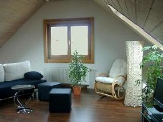 Vacation Apartment in Holzmaden - 581 sqft, spacious, comfortable, well furnished (# 2123)